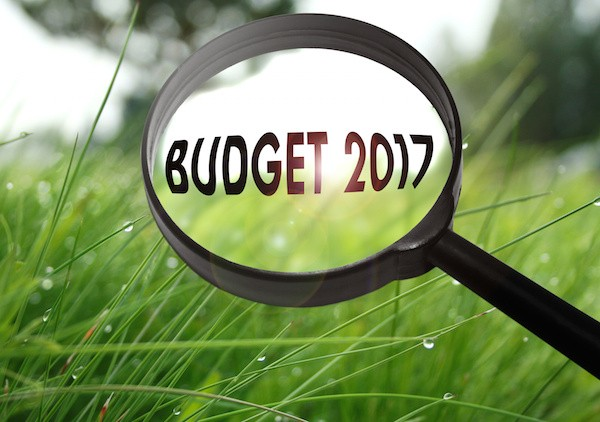 Marshall Smalley 2017 Budget Overview