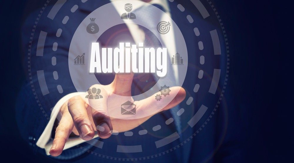 When are businesses audited?